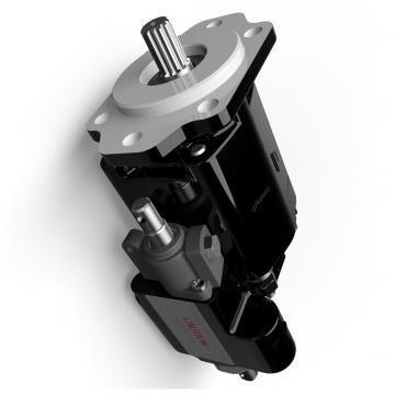 Atos PFG-187 Gear Pump