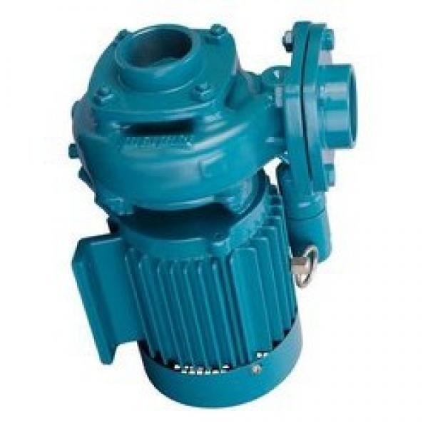 Atos PFE-41056 Vane Pump #1 image