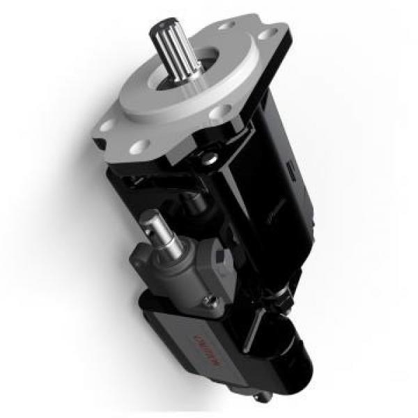 Atos PFG-218/S Gear Pump #1 image