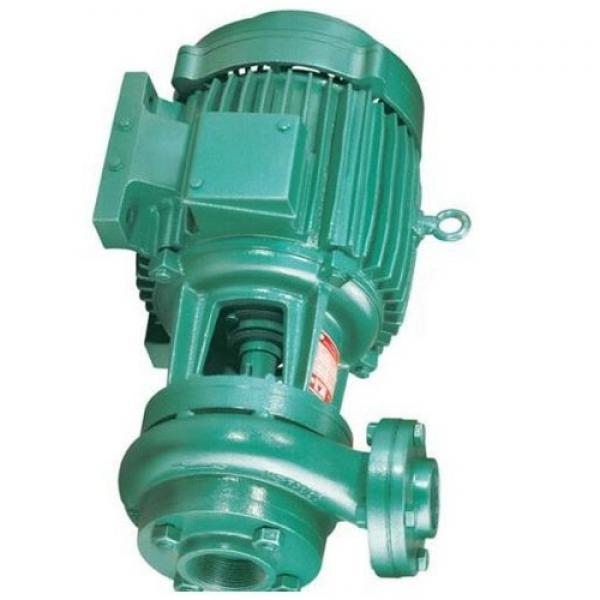 Atos PFE-52110 Vane Pump #1 image