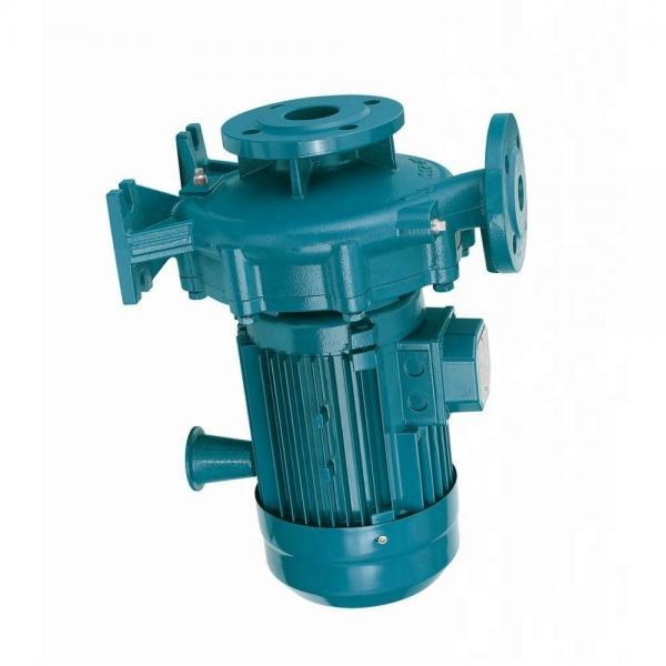 Atos PFG-128 Gear Pump #1 image
