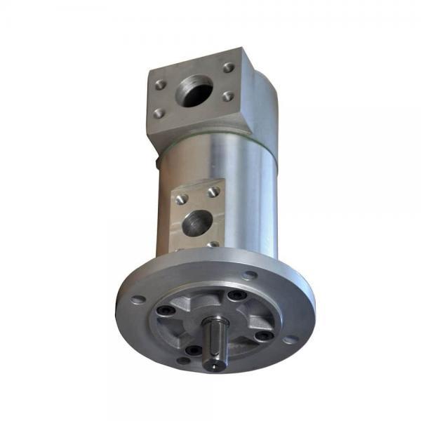 Toko SQP3-30-1A-18 Single Vane Pump #1 image