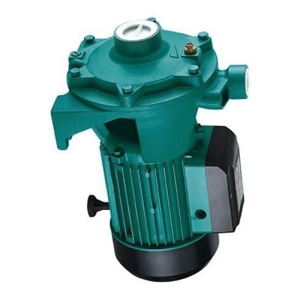 Toko SQP43-75-38-1CC-18 Double Vane Pump #1 image