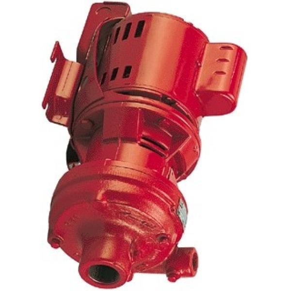 Yuken PV2R12-17-33-F-RAAA-4222 Double Vane Pumps #1 image
