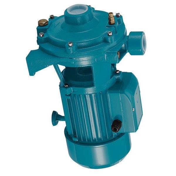 Toko SQP1-8-1A-L-15 Single Vane Pump #1 image