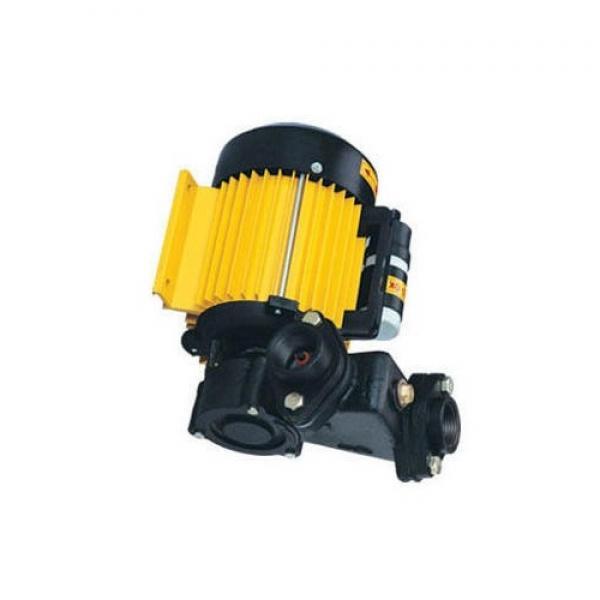 Yuken A3H145-LR09-11A4K1-10 Variable Displacement Piston Pumps #1 image